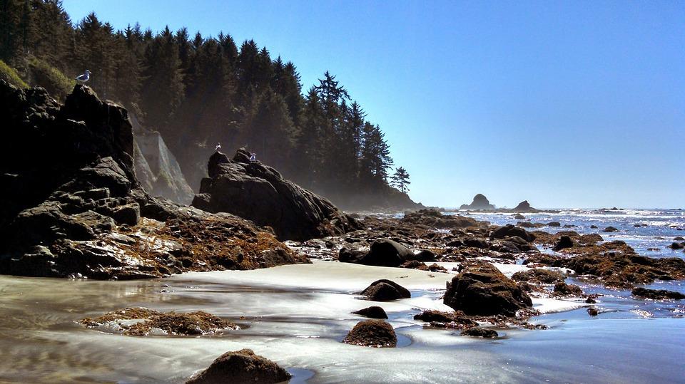 Stones Rocks Ocean Sea Seacoast Coast Landscape
